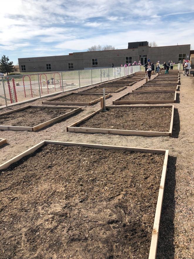 The massive garden - 22 beds!